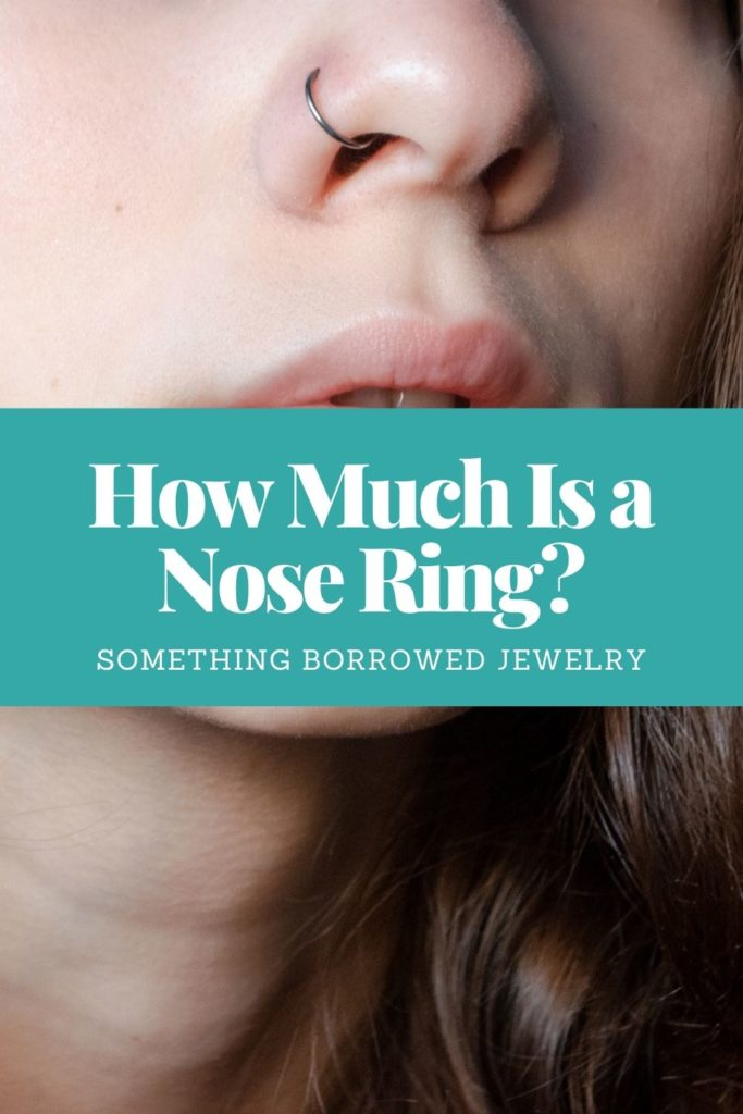 How Much Is a Nose Ring 2