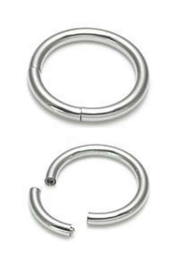 Segment nose ring 1